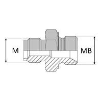 Adaptateur droit mâle Agricole 18X1,5 x mâle BSP pour bague BS